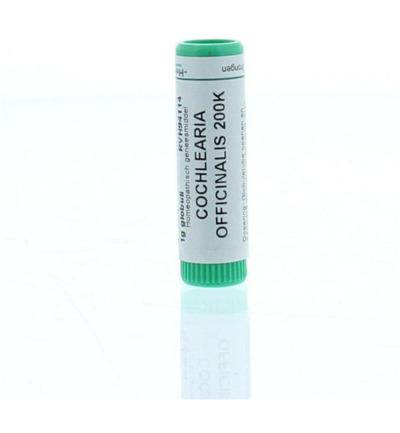 Cochlearia officinalis 200K