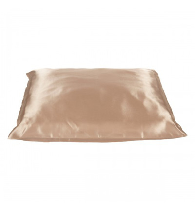 Pillow champagne 60 x 70