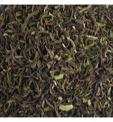 Darjeeling first flush jungpana
