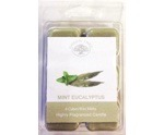 Wax melts mint eucalyptus