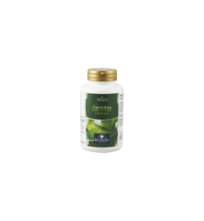Groene Thee Extract 400mg 90vc