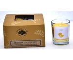 Geurkaars Florida grapefruit votives