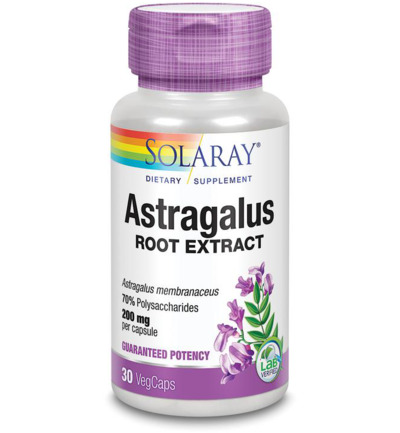 Astragalus wortelextract 200 mg
