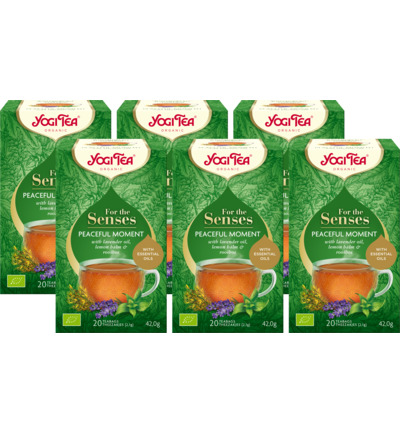 Tea for the senses peaceful moment 6-pack