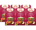 Ginger hibiscus 6-pack