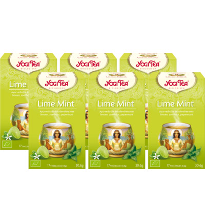 Lime mint 6-pack