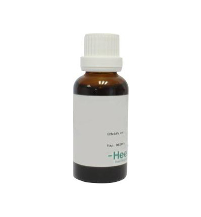 Zingiber officinale phyto