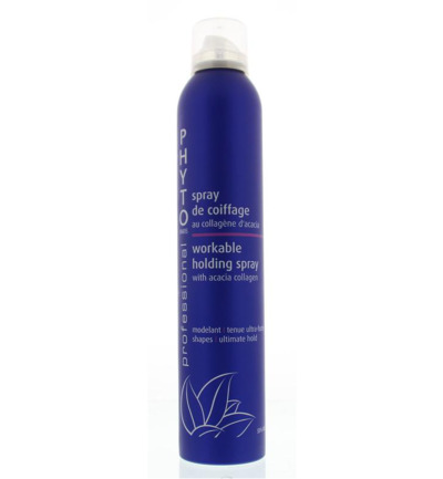 Professional workable holding spray