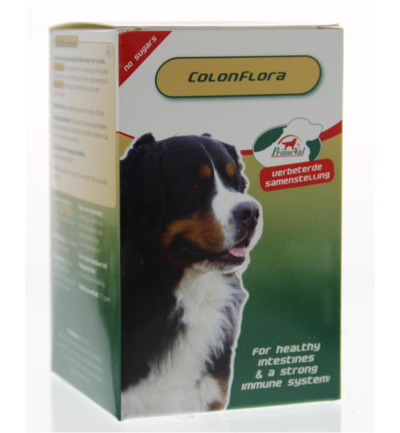 Colon flora hond