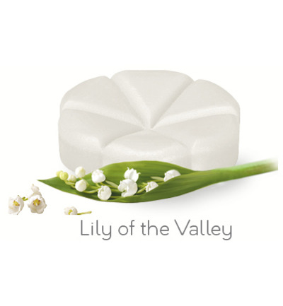 Afbeelding van Creations Geurchips Lily Of The Valley 10st