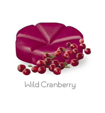 Geurchips wild cranberry