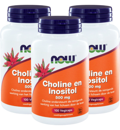 Choline en inositol 500mg trio